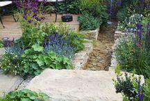 Haus: Garten