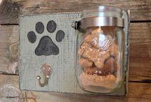mascotas y hogares