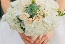 real weddings:: museum of nature & science / by The Perfect Petal