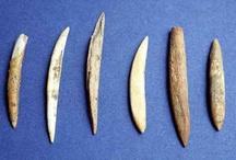 Mesolithic Period / A study for school - Year 5 curriculum work.