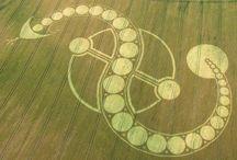 Crop Circles / by Kara Sevgi