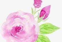 Romantic roses in watercolor