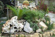 videob crea giardino roccioso