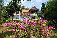 Island Suite Four / Spacious and comfortable Island Suite with a bright bath-room and a little garden. Good for little families. No kitchen and no balcony, but shops and restaurants in walking distance. Enjoy the best beaches of Koh Mak in less than 10 minutes walking.