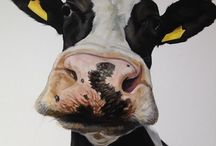 Not Horses / Commissioned paintings and drawings of cows, dogs, Irish wildlife & other random musings by Artist Tony O'Connor www.whitetreestudio.ie