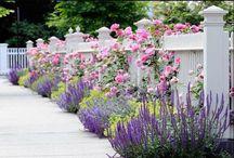 idee voor tuin