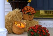 Autumn & Halloween Decorating