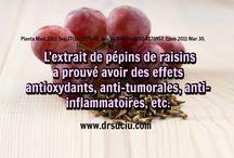 L'extrait de pépins de raisins