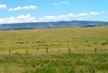 Wyoming Experience