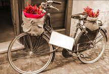 Decoração com Quadros de Arte! / Veja + Inspirações e Dicas de decoração no blog!  www.construindominhacasaclean.com
