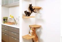 Cat home krabpalen / Krabpalen kattenwasjes cats homes