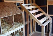 Chook House Ideas / I want to convert and old she's into a chook house. Here are some ideas of how I can build lay boxes, a perch to roost and an adequate run. Hopefully this motivates my husband to give me a hand.