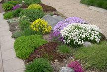 Boulevard Garden