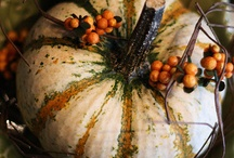 Fall Inspiration / Such a glorious season...so many materials to bring inside and use to transform your home! / by Far Hills Florist