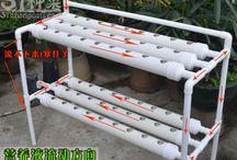hydroponics kit