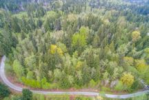 Active Listing: 100 Lot 6 201st Ave NE, Snohomish 98290 / Secluded, slightly sloping custom home site on a private drive. Shared well hookup available. Septic designs can be re-approved using the original design company for around $2,300. Small creek running through the property, critical areas have been marked. Bring your builder! Buyer to verify all information to their satisfaction.