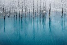 Beautiful / by Kristi Tobey