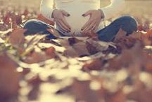 fall maternity pictures