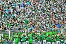bursaspor / Bursaspor ,şampiyon ,teksas,batalla,bursankara,green army,bursa