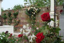 Argentikon surroundings / Architecture, gardens, orchard