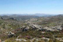 Natureza portuguesa / As melhores imagens da natureza em Portugal