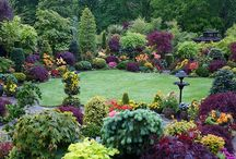 garden ideas/yard decor / by Maury Hill