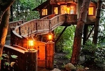 Outdoor Rooms / Tree houses, patio, outdoor decorations