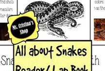 Snakes Unit Study