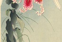 Japanese Art--Ohara Koson / by Bonnie Koenig