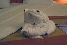 towels folding