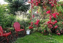 Cora's Garden Inspiration / by Kristine Brite McCormick