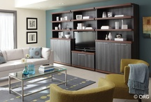 Entertainment Centers / This board showcases our work designing, building and installing entertainment centers.