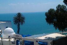 My holiday  / Tunisia-Hammamet