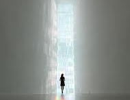 Tokujin Yoshioka / by Stacy Bourns