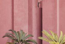 Pink / Everything Pink