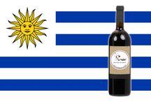 Vinhos do Uruguai / Seleção de Vinhos do Uruguai