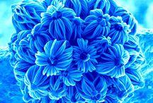Patterns Textures Colour