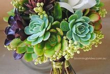 Floral / Floral inspiration for the perfect flowers for your event / by Sendo Invitations