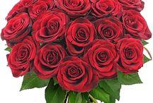Bouquets de Roses / Roses multicolores, rouges, blanches, roses, jaunes, orange... A découvrir ici ► http://bit.ly/1SEnNxP