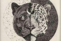 Zodiac & Stars