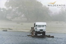 From humble beginnings - Wilderness Safaris  / May 2013 marks Wilderness Safaris' 30th birthday as Africa's leading ecotourism and conservation company. From humble beginnings in 1983, the company has grown substantially over the last 30 years – not only in size but also in its ability to positively impact Africa.