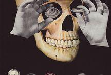 Reference: Skull