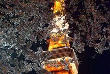 Amazing Photos of Tokyo