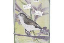 I love birds / by Marie Austin