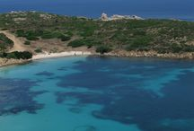 Asinara - The island in the island - Il Melo Residence Sardinia / An island in the north west of Sardinia, Italy. It was a prison up to '90 years. It's a national park now.