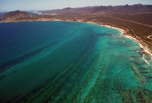 Cabo Pulmo considered as a cultural patrimony / by Visit Baja California Sur