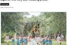 Wedding / by Chanda Mittan
