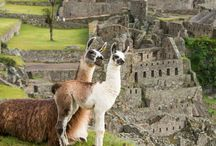 Visit Cusco / Do you want to know what will you find in Cusco?