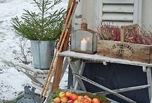Winter tuin idee
