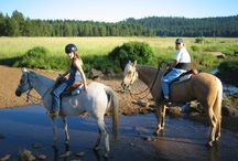 Horse Camping / Camping and outdoors opportunities abound in Southern Oregon.  The trails are numerous and the views are breathtaking.  If you're not up for hiking you can for a horseback ride or take an ATV for a spin.   Not to mention boating, jet-skiing, more!